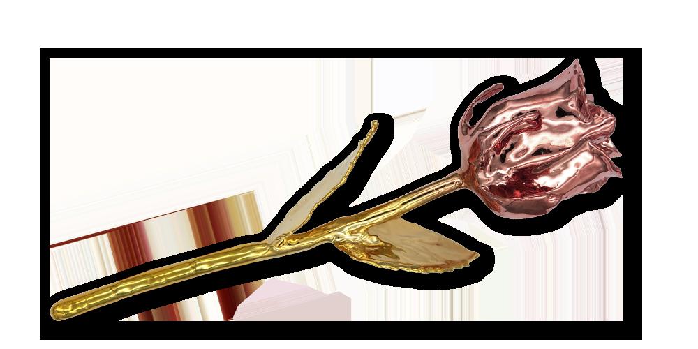 Pravá ruža zušľachtená rýdzim zlatom