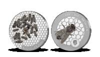 Včela medonosná na jednej unci rýdzeho striebra